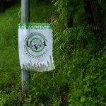 20160522_08h28_005 UVA Asperges Ully-Saint-Georges